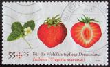Poštovní známka Německo 2010 Jahody Mi# 2777