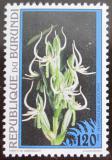 Poštovní známka Burundi 1995 Flóra, květiny Mi# 1814