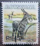 Poštovní známka Botswana 2002 Voduška velká Mi# 754