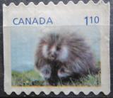 Poštovní známka Kanada 2013 Urzon kanadský Mi# 2928