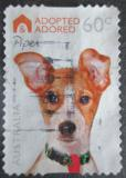 Poštovní známka Austrálie 2010 Adoptovaný pes Mi# 3415
