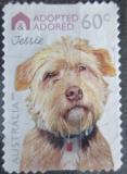 Poštovní známka Austrálie 2010 Adoptovaný pes Mi# 3416