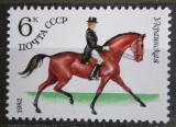 Poštovní známka SSSR 1982 Dostihy Mi# 5149