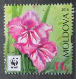 Poštovní známka Moldavsko 2016 Mečík střechovitý Mi# 961 Kat 6€