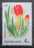 Poštovní známka SSSR 1986 Tulipány Mi# 5573