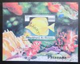 Poštovní známka Guinea 1997 Zebrasoma flavescens Mi# Block 510