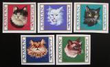 Poštovní známky Adžmán 1968 Kočky neperf. Mi# 318-22 B