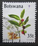 Poštovní známka Botswana 1998 Fíkovník Mi# 669
