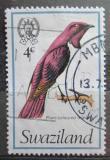 Poštovní známka Svazijsko 1976 Leskoptev bělobřichá Mi# 237
