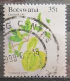 Poštovní známka Botswana 1997 Uzlenec Mi# 654