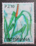 Poštovní známka Botswana 2005 Bér italský Mi# 814