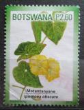 Poštovní známka Botswana 2011 Ipomoea obscura Mi# 941