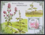 Poštovní známka Svatý Tomáš 2009 Léčivé rostliny Mi# Block 732