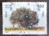Poštovní známka Indie 1987 Pipal Mi# 1123