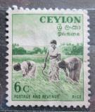 Poštovní známka Cejlon 1954 Sběr rýže Mi# 267