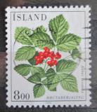 Poštovní známka Island 1985 Ostružník skalní Mi# 628