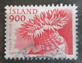 Poštovní známka Island 1985 Tealia felina Mi# 638