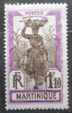 Poštovní známka Martinik 1928 Žena s ananasem Mi# 103