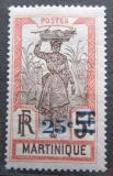 Poštovní známka Martinik 1924 Žena s ananasem přetisk Mi# 108