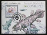 Poštovní známka Komory 2009 Latimérie podivná Mi# Block 511 Kat 15€