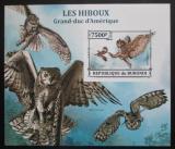 Poštovní známka Burundi 2013 Sovy neperf. Mi# Block 389 B