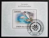 Poštovní známka Komory 2009 Rybák jihoamerický Mi# Block 576 Kat 15€