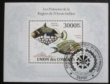 Poštovní známka Komory 2009 Ryby Mi# Block 572 Kat 15€
