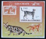 Poštovní známka Komory 2009 Kočky DELUXE Mi# 2207 Block