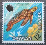 Poštovní známka Kajmanské ostrovy 1971 Kareta pravá Mi# 284