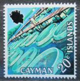 Poštovní známka Kajmanské ostrovy 1971 Želví farma Mi# 285