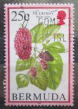 Poštovní známka Bermudy 1998 Morušovník černý Mi# 660 II