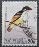 Poštovní známka Zambie 1977 Vousák bělouzdičkový Mi# 184