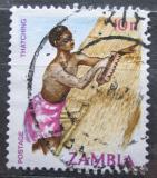 Poštovní známka Zambie 1981 Pokrývač Mi# 253