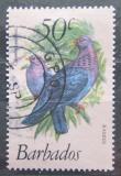 Poštovní známka Barbados 1979 Holub šedobřichý Mi# 476