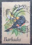 Poštovní známka Barbados 1979 Lesňáček lejskovitý Mi# 479 Kat 7€