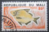 Poštovní známka Mali 1975 Citharinus latus Mi# 484
