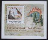 Poštovní známka Mosambik 2009 Dinosauři DELUXE Mi# 3434 Block
