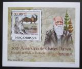 Poštovní známka Mosambik 2009 Dinosauři DELUXE Mi# 3437 Block