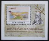 Poštovní známka Mosambik 2009 Dinosauři DELUXE Mi# 3438 Block