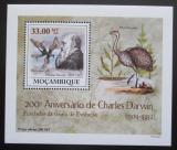 Poštovní známka Mosambik 2009 Dinosauři DELUXE Mi# 3439 Block