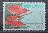Poštovní známka Malawi 1985 Houby Mi# 441
