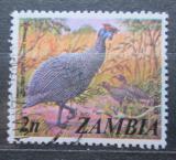 Poštovní známka Zambie 1975 Perlička kropenatá Mi# 142