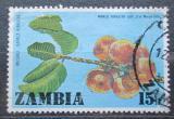 Poštovní známka Zambie 1976 Uapaca kirkiana Mi# 166