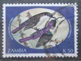 Poštovní známka Zambie 1994 Ptáci Mi# 626