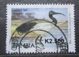 Poštovní známka Zambie 2010 Ibis posvátný přetisk Mi# 1644