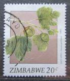 Poštovní známka Zimbabwe 1991 Flóra Mi# 460