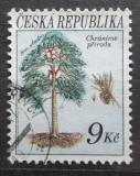Poštovní známka Česká republika 1993 Borovice lesní Mi# 25