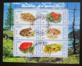 Poštovní známky Burundi 2011 Žáby Mi# N/N