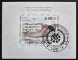 Poštovní známka Komory 2009 Pták a minaret mešity Mi# Block 577 Kat 15€