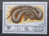 Poštovní známka SSSR 1977 Zmije paví Mi# 4680